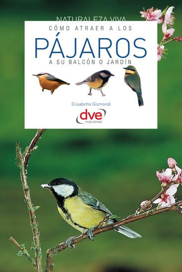 Cómo atraer a los pájaros a su balcón o jardín - cover