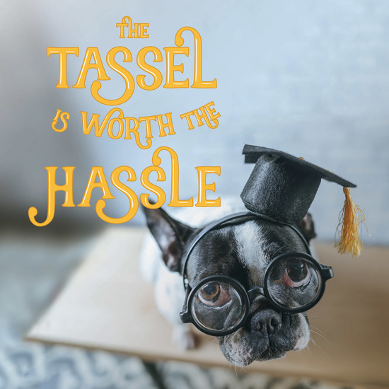 The The Tassel Is Worth the Hassle - cover