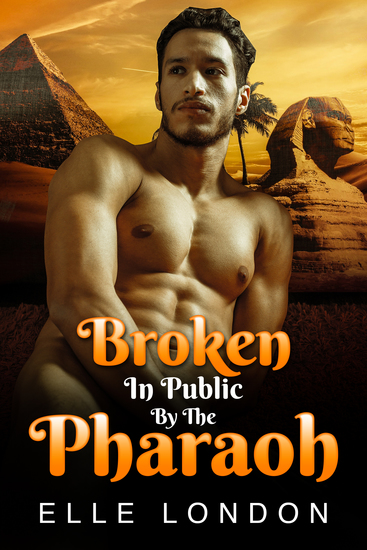 Broken In Public By The Pharaoh - cover