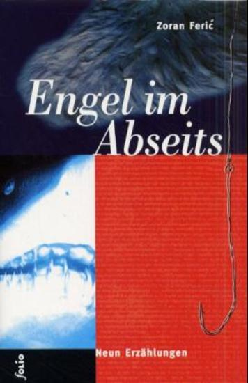 Engel im Abseits - cover