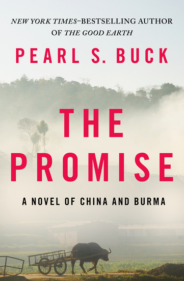 The Promise - A Novel of China and Burma - cover