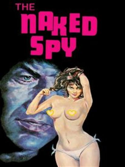 Naked Spy - Adult Erotica - cover