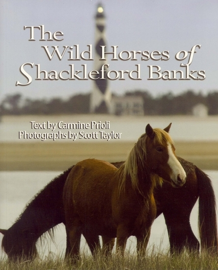 Wild Horses of Shackleford Banks - cover