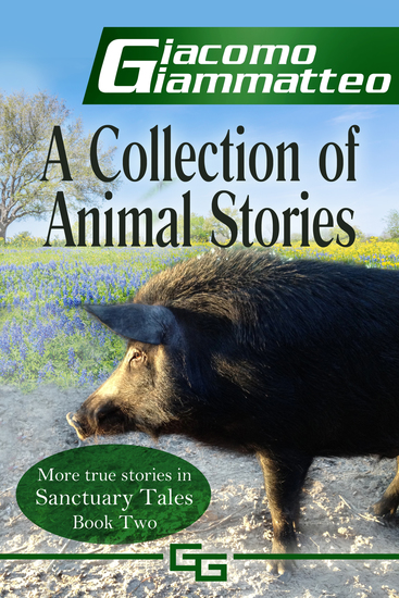A Collection of Animal Stories - Sanctuary Tales Volume II - cover