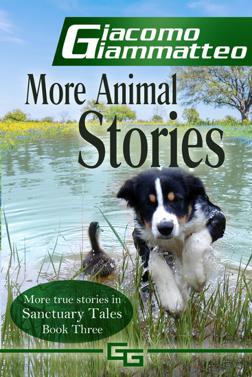 More Animal Stories - Sanctuary Tales Volume III - cover