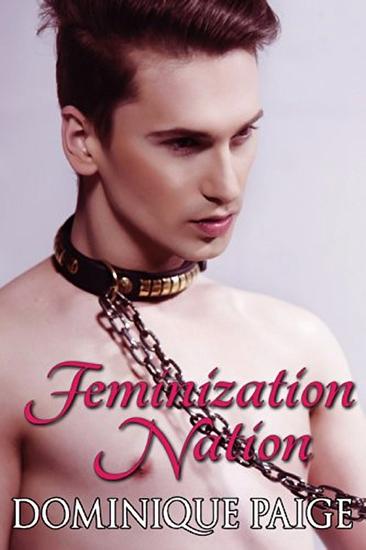 Feminization Nation - cover