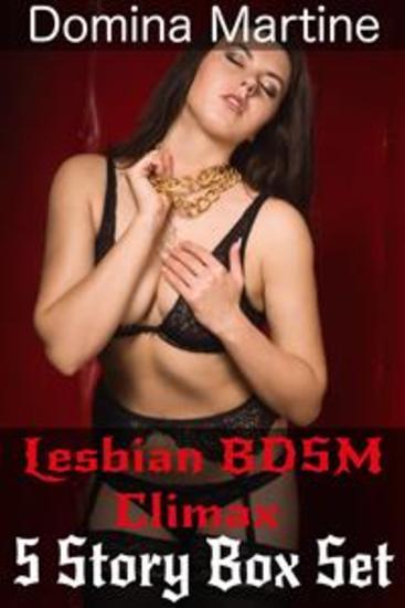 Lesbian BDSM Climax 5 Story Box Set - cover