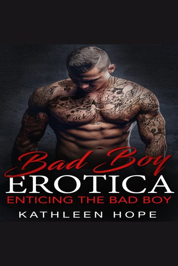 Bad Boy Erotica: Enticing the Bad Boy - cover