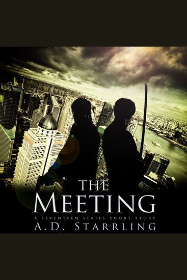 The Meeting - A Seventeen Series Short Story - cover