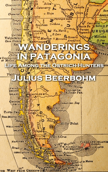 Wanderings in Patagonia - cover