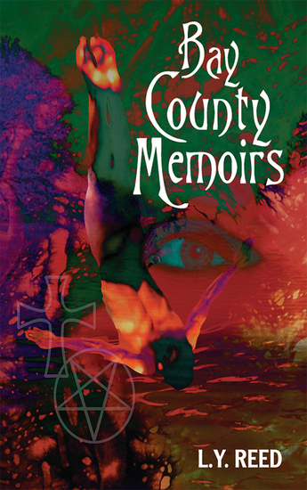 Bay County Memoirs - cover