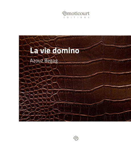 La vie domino - Une nouvelle dans les bidonvilles lyonnais - cover