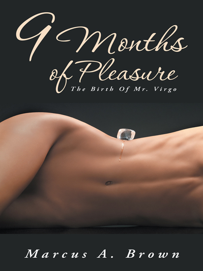 9 Months of Pleasure - The Birth of Mr Virgo - cover
