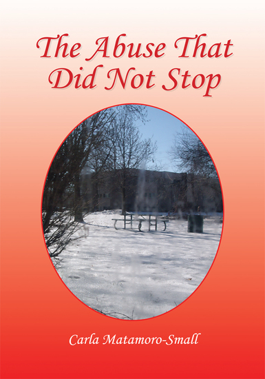 The Abuse That Did Not Stop - cover