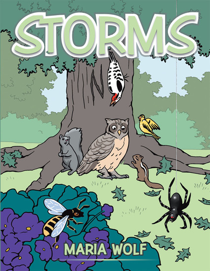 Storms - cover