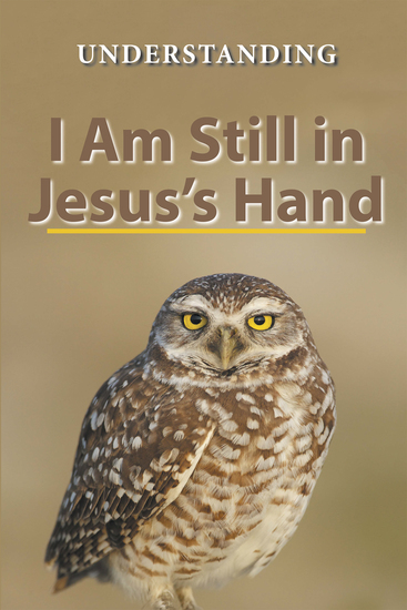 I Am Still in Jesus'S Hand - cover