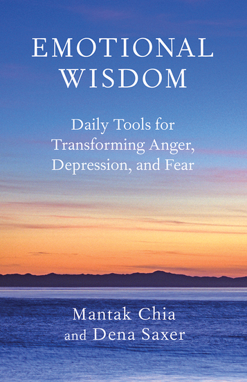 Emotional Wisdom - Daily Tools for Transforming Anger Depression and Fear - cover