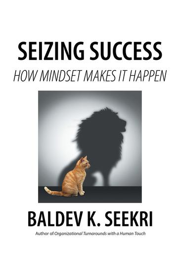 Seizing Success - How Mindset Makes It Happen - cover