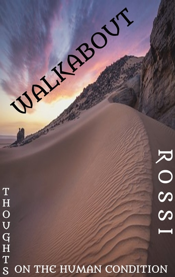 Walkabout - Thoughts on the Human Condition - cover