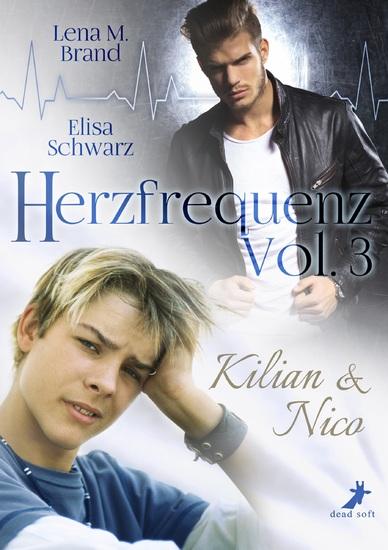 Herzfrequenz Vol 3 - Kilian & Nico - cover