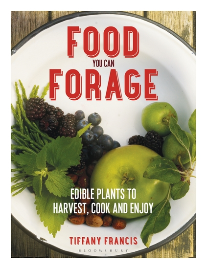 Food You Can Forage - Edible Plants to Harvest Cook and Enjoy - cover