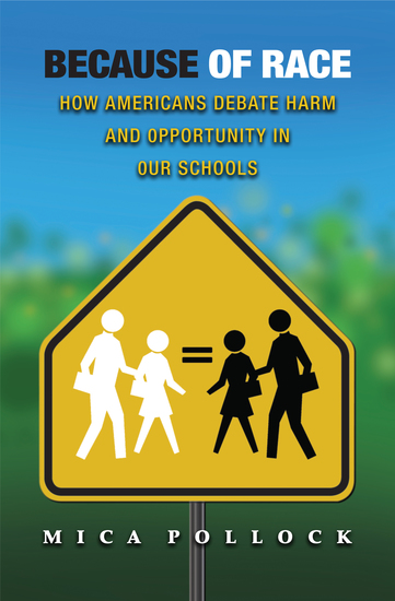 Because of Race - How Americans Debate Harm and Opportunity in Our Schools - cover