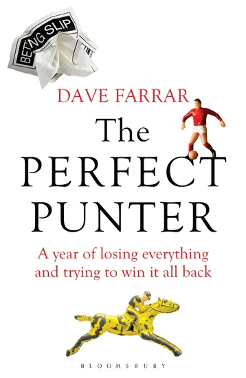 The Perfect Punter - A Year of Losing Everything and Trying to Win It All Back - cover