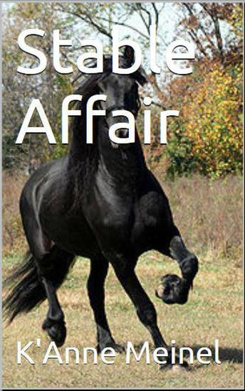 Stable Affair - cover