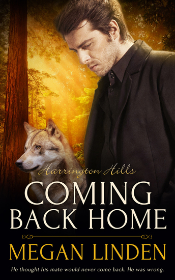 Coming Back Home - cover