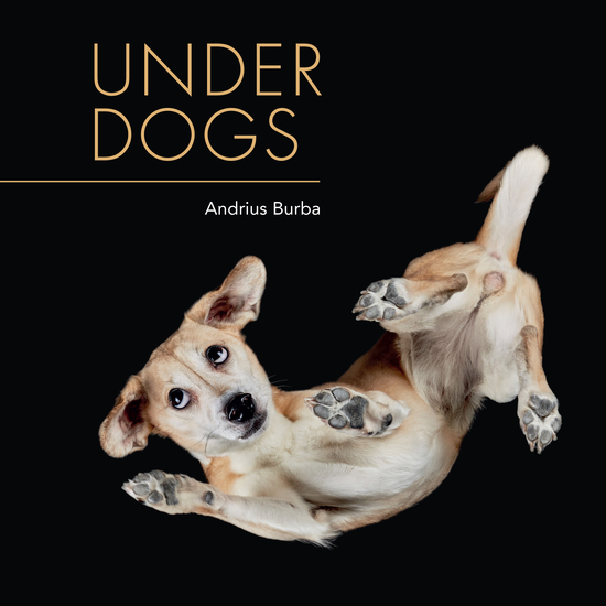 Under Dogs - cover