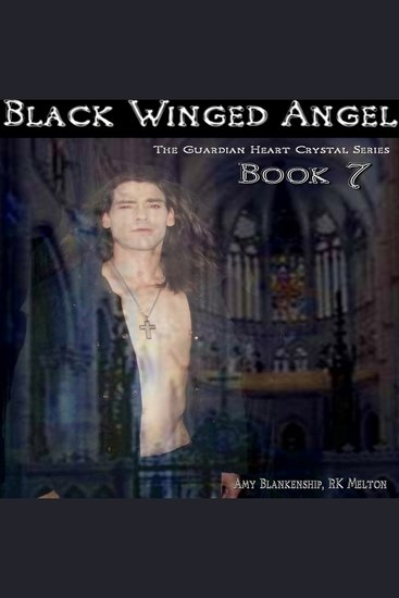 Black Winged Angel - cover