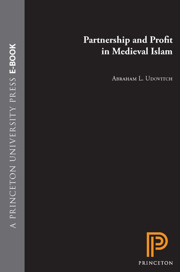 Partnership and Profit in Medieval Islam - cover