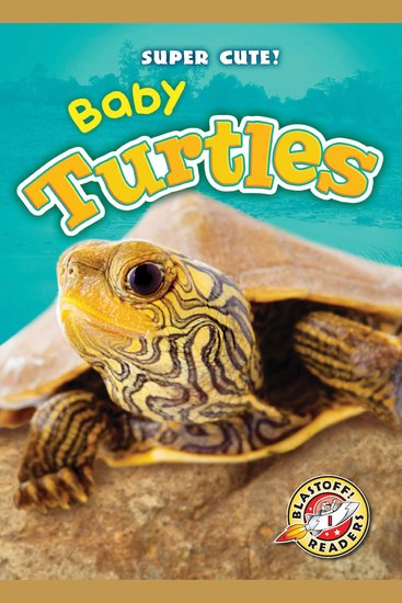 Baby Turtles - cover