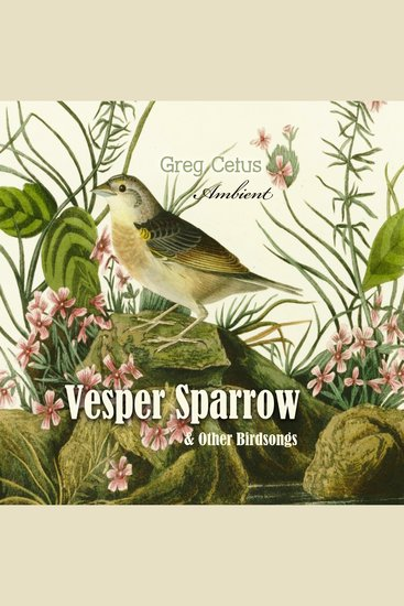 Vesper Sparrow and Other Bird Songs - cover