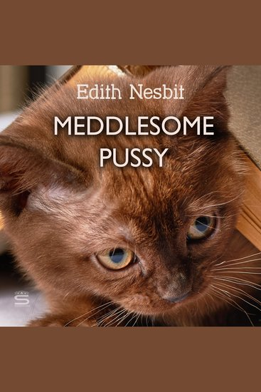 Meddlesome Pussy - cover