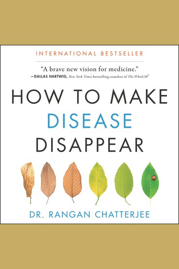 How to Make Disease Disappear - cover