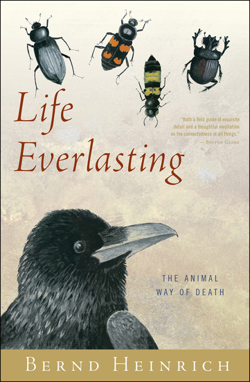 Life Everlasting - The Animal Way of Death - cover