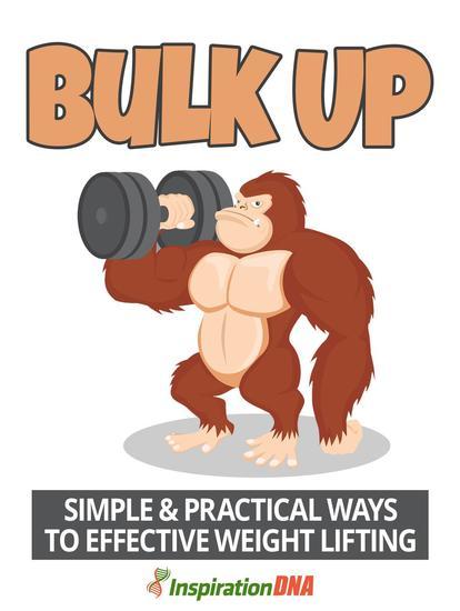 Bulk Up - cover