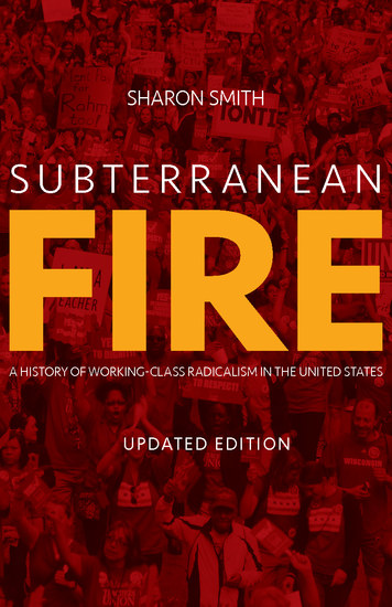 Subterranean Fire (Updated Edition) - A History of Working-Class Radicalism in the United States - cover