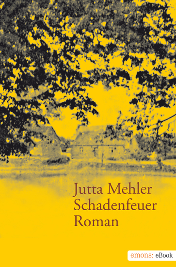 Schadenfeuer - Roman - cover