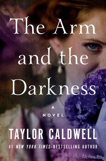 The Arm and the Darkness - A Novel - cover