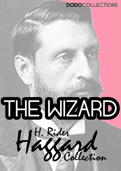 The Wizard - cover