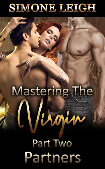 Partners - A BDSM Erotic Romance - cover