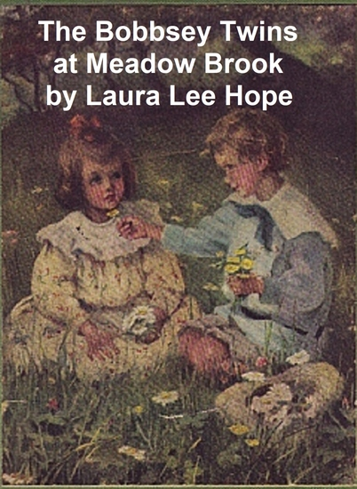 The Bobbsey Twins at Meadow Brook - cover