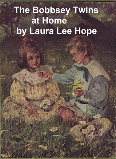 The Bobbsey Twins at Home - cover
