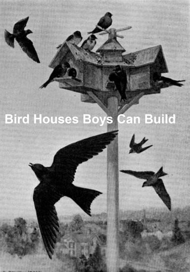 Bird Houses Boys Can Build - cover