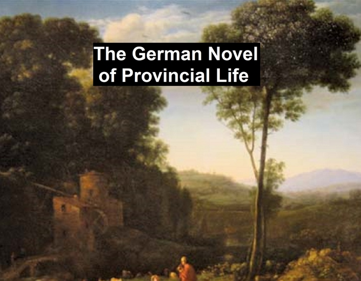 The German Novel of Provincial Life - cover