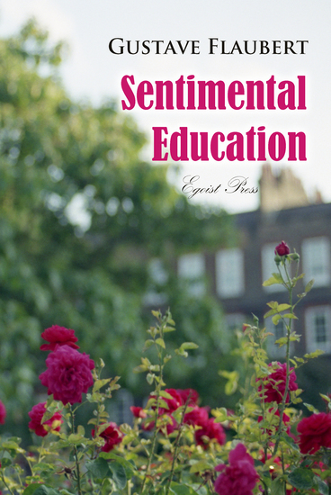 Sentimental Education: The History of a Young Man - cover