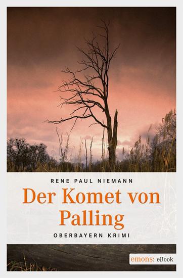 Der Komet von Palling - cover