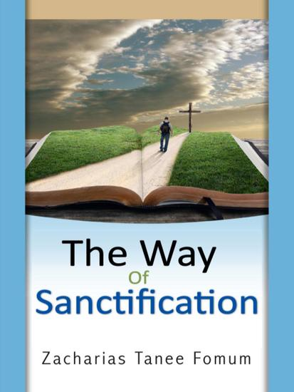 The Way of Sanctification - The Christian Way #4 - cover